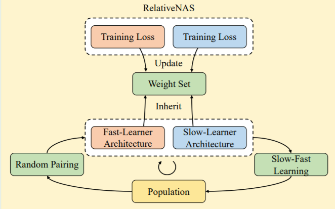 [IEEE TNNLS] RelativeNAS: Relative Neural Architecture Search via Slow-Fast Learning